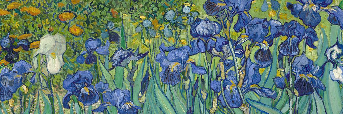 Irises | Van Gogh Gallery