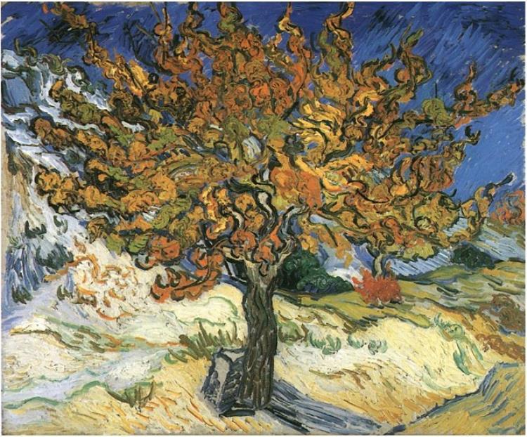The Mulberry Tree Van Gogh Gallery